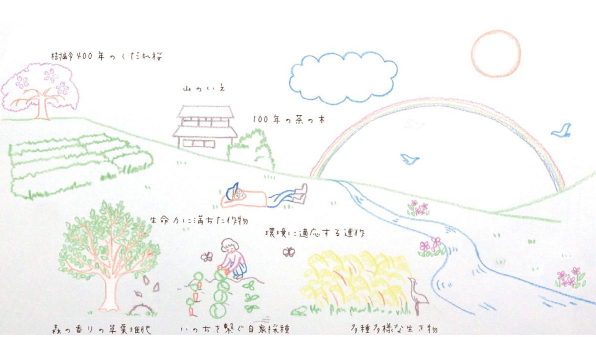 山のいえ | 信楽 山本農園